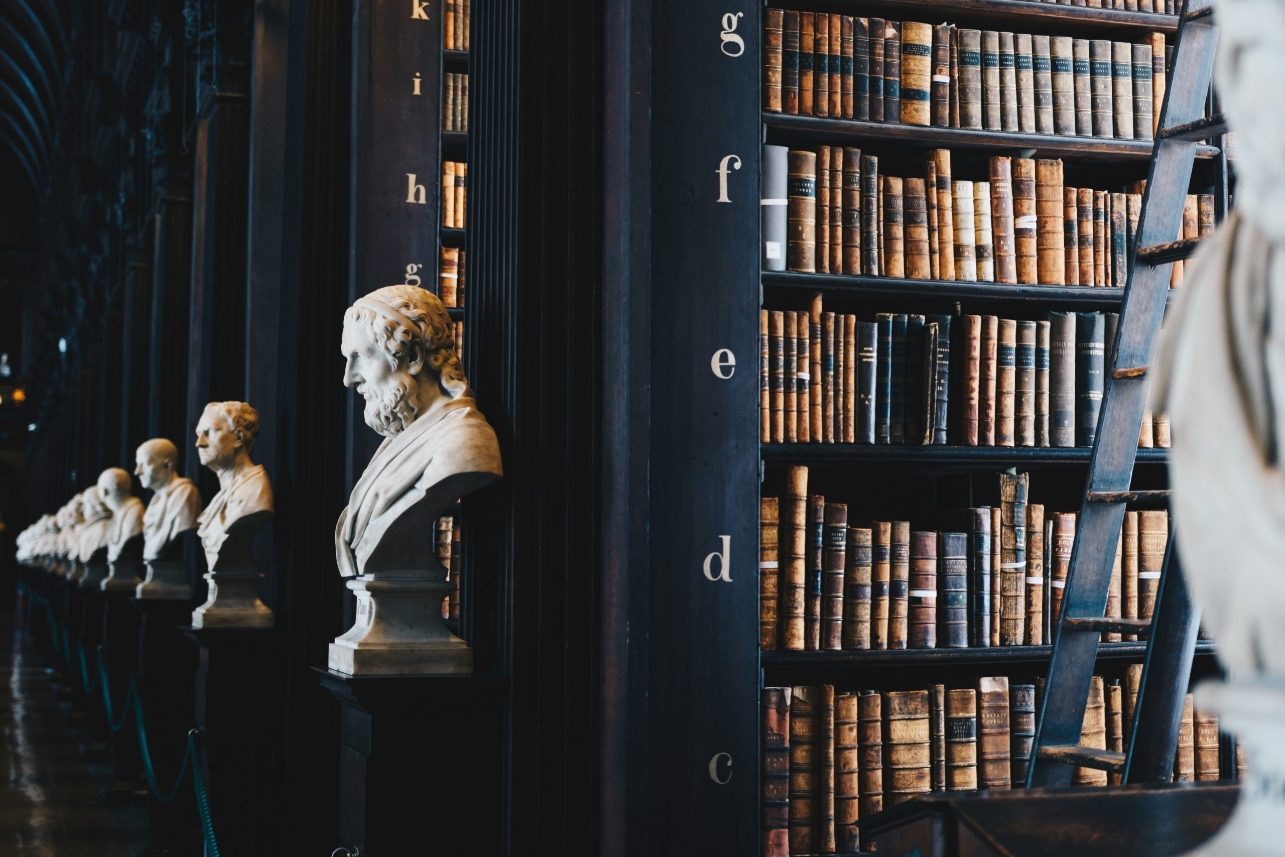View of a library shelf with old books and bust sculptures of historical figures